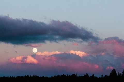 The moon at sunset with pink clouds