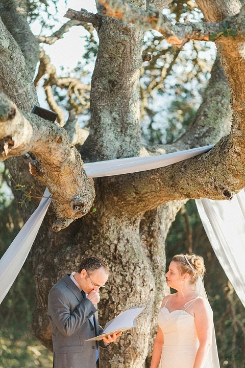 California Wedding Under a Tree