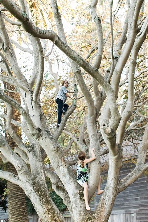 kids climbing tree at wedding