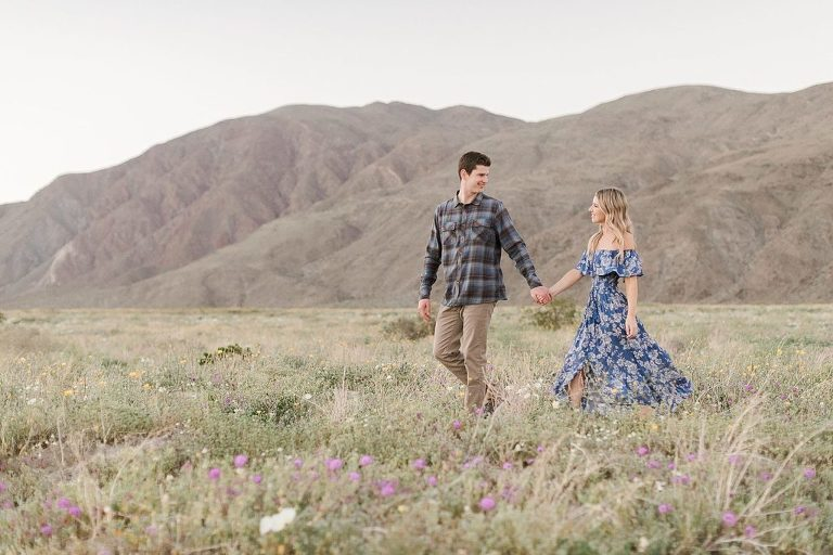 Anza Borrego is one of the most underrated places to elope in California