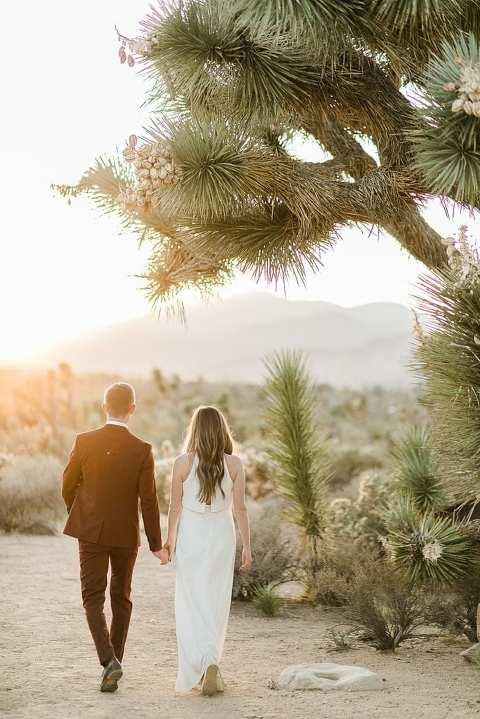 Couple walking under a Joshua Tree
