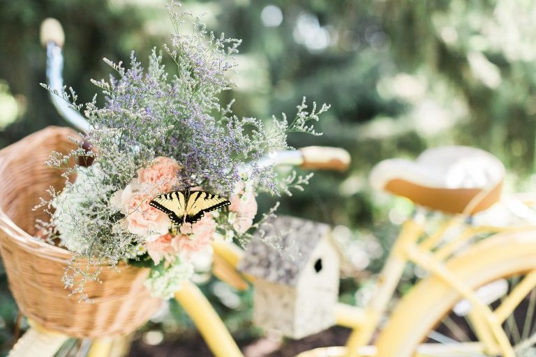 Butterfly lands during Wedding